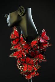 0butterflies
